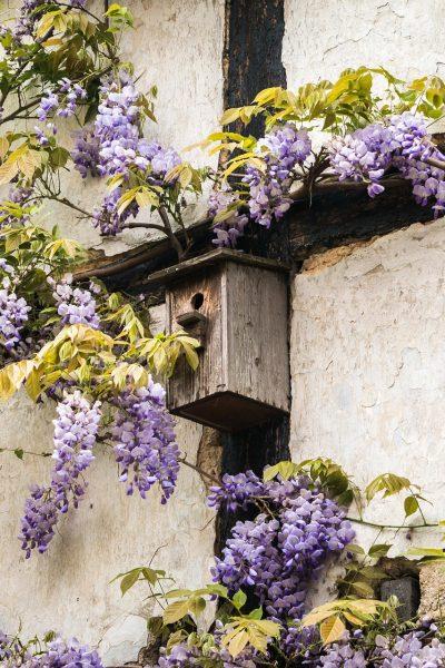 Ajouter_un_toit_et_un_perchoir_à_une_maison_d_oiseaux